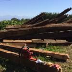 薪の玉切り用のチェンソー選び(人柱目線)