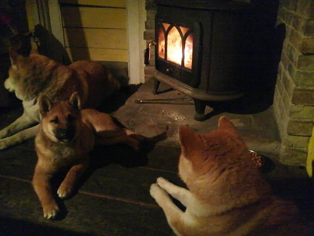 初代犬小屋の薪ストーブ