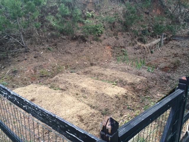 玄関脇の小さな畑→キッチン・ガーデン