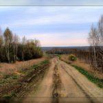 「極東1ヘクタール法」が何気に素敵(ロシア人目線)
