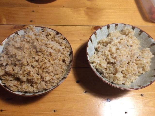 炊飯器で炊いた玄米と比較