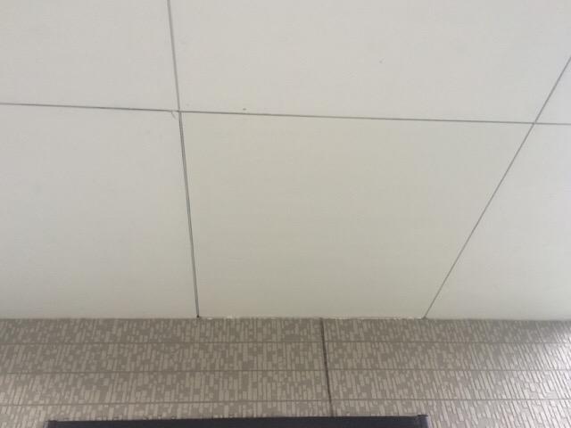 軒天修理 塗装