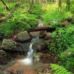 山の水源確保