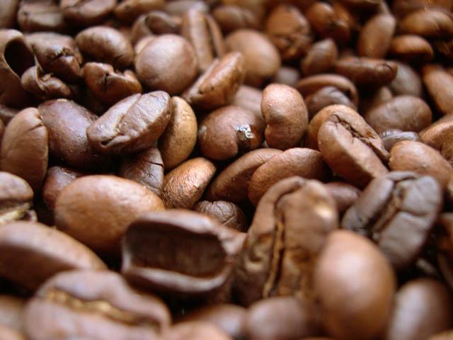 コーヒー豆の不純物(焼き豆)